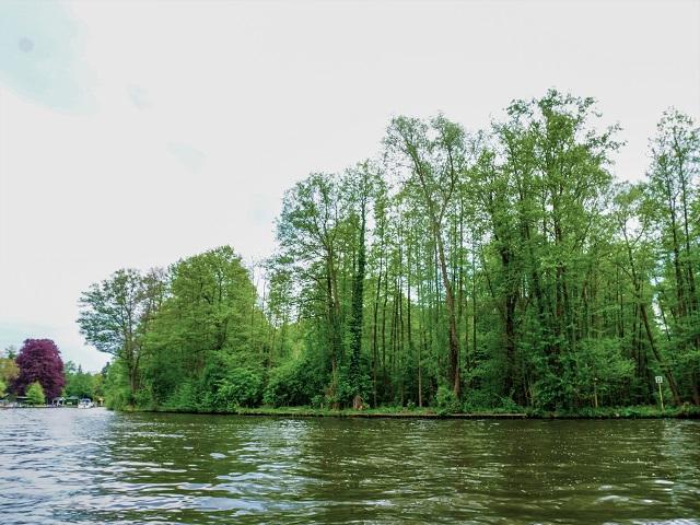 4 ha Waldfläche mit Uferfront an der Müggelspree ** gegenüber der Rahnsdorfer Siedlung Neu-Venedig** Einnahmen p.a. € 1.250,--