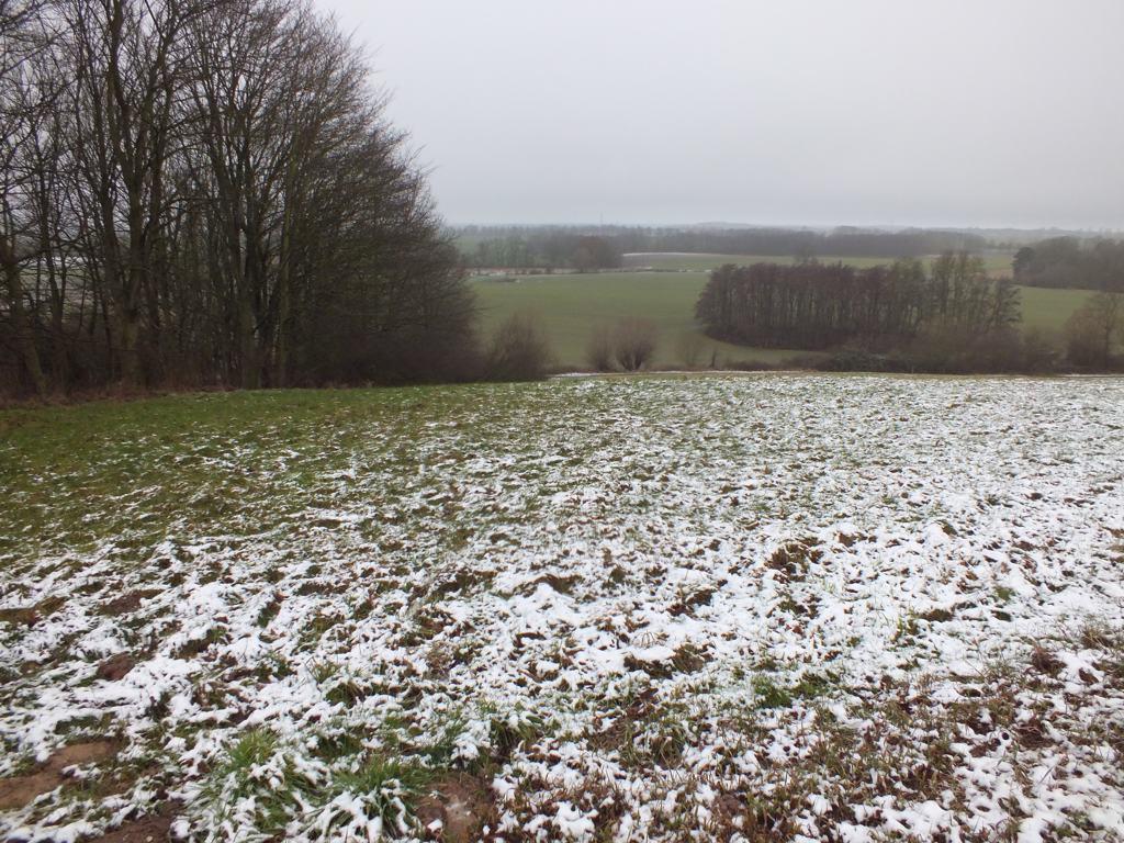 Landwirtschafts- & Waldfläche etwa 12 km von Wismar und etwa 13 km von der Insel Poel (jeweils Luftlinie) entfernt