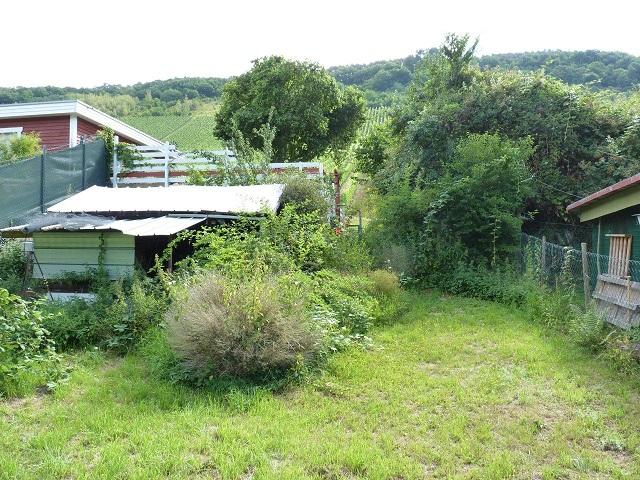 Vertragsfreies Baugrundstück mit Bauvorbescheid für 2 Tinyhäuser am Fuße von Weinbergen und oberhalb der Mosel