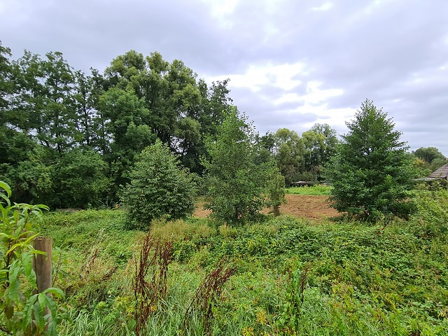 Grünfläche teilweise mit Baumbewuchs ca. 16 km vom Zentrum der Landeshauptstadt Stuttgart entfernt